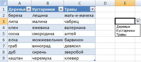 Таблица со списком.